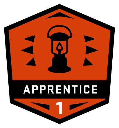 ALI  level1 apprenticebadge