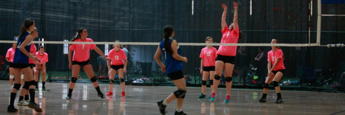 Oregon State University Intramural Sports volleyball