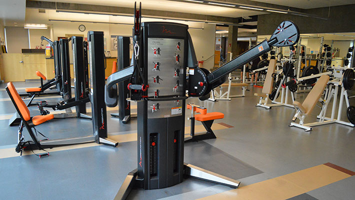 FreeMotion Weight Equipment